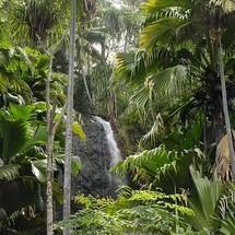 Waterfall Vallee de Mai©Gerard Larose