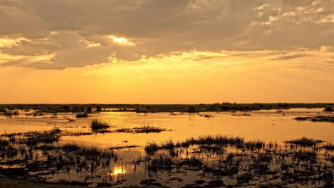 Linyanti Ebony sunset