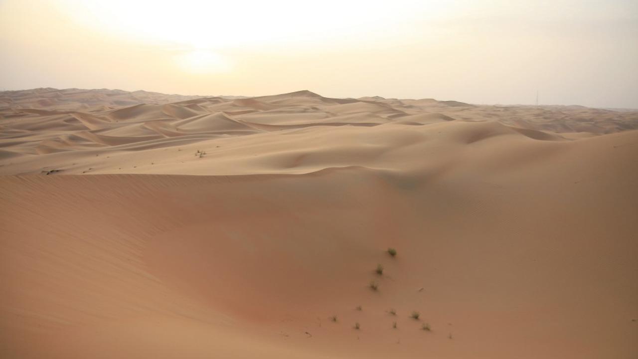 Dubais Wüste  ©Hendrik Bohle